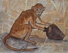 Monkey-peanuts-trap